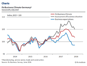 The IFO survey