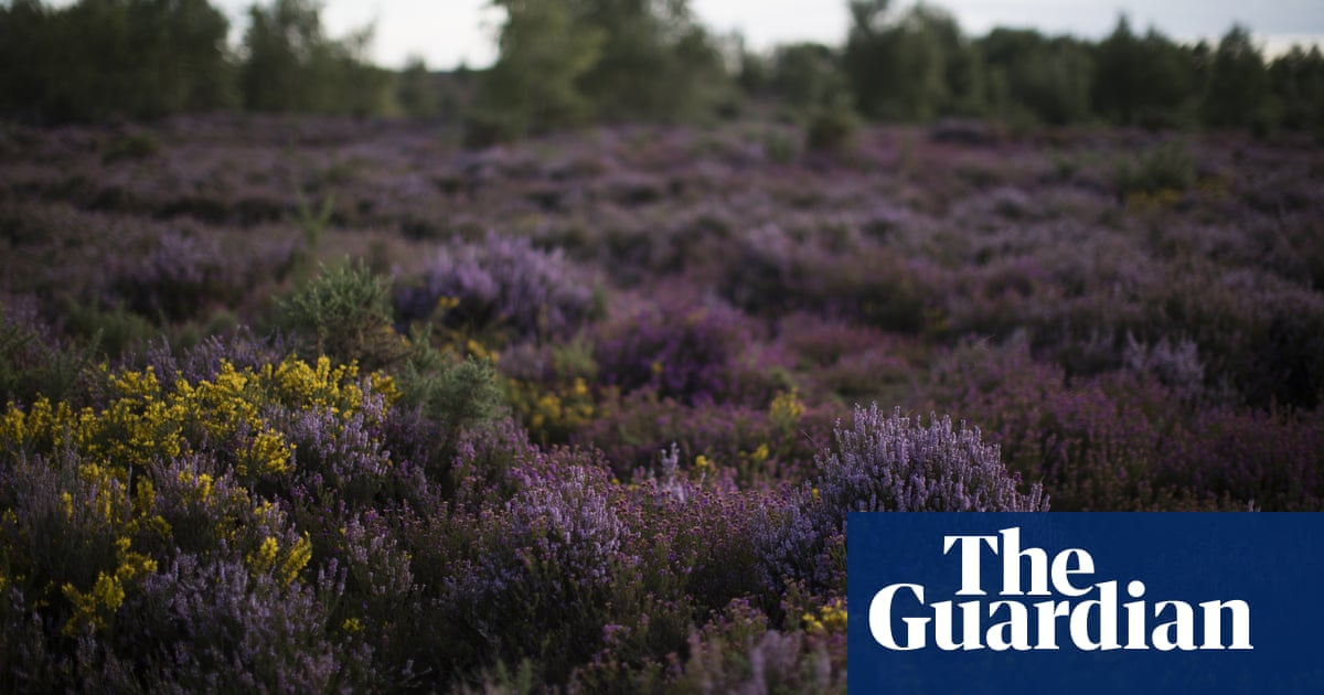 Agency protecting English environment reaches 'crisis point'
