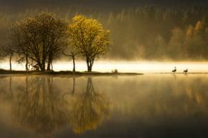 Ard Awakening, Loch Ard, Scotland