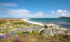 Tresco landscape, Scilly Isles