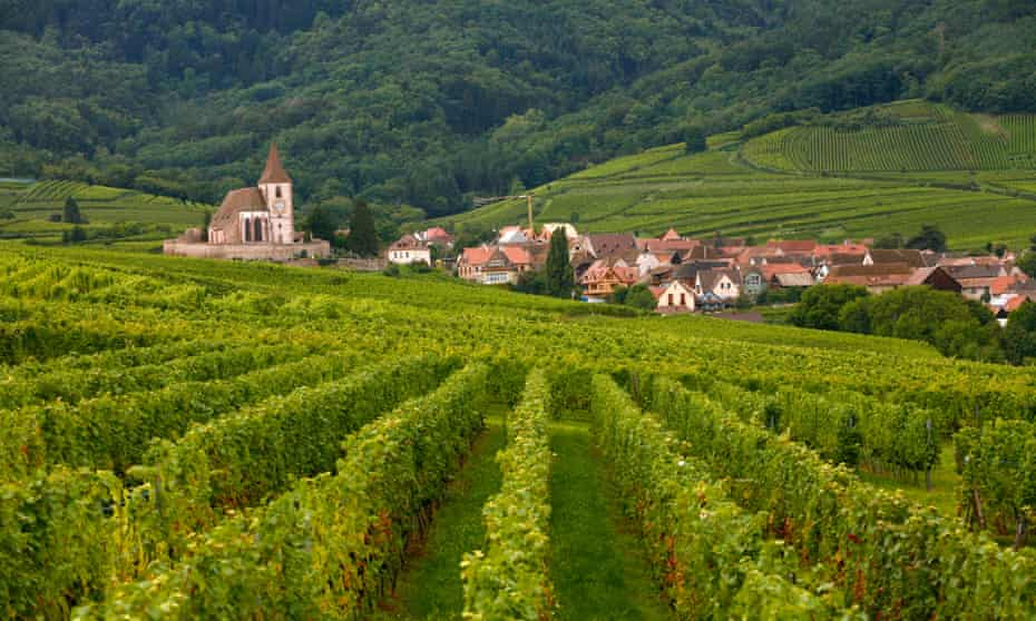 Vineyards and villages along the wine route in Alsace, France