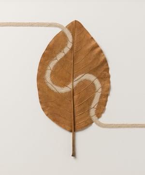 Path lV, a leaf sculpture by Susanna Bauer