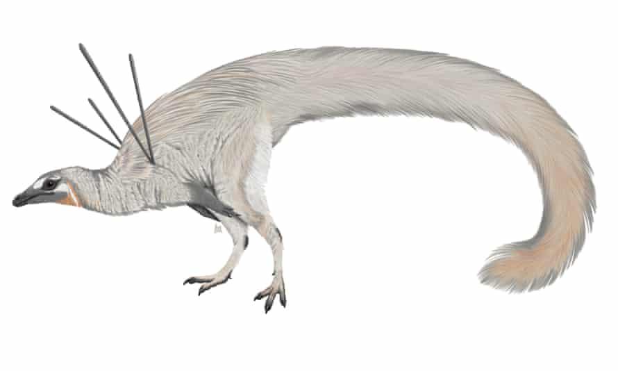 An artist's rendering of Ubirajara jubatus.