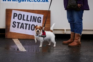 Tilly, a Jack Russell Shih Tzu cross, is keen to move on from a mobile polling station in Bury South