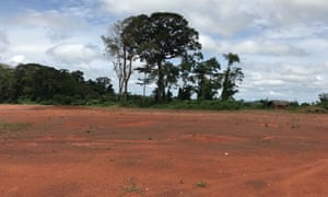 An area of cleared forest in Ivory Coast