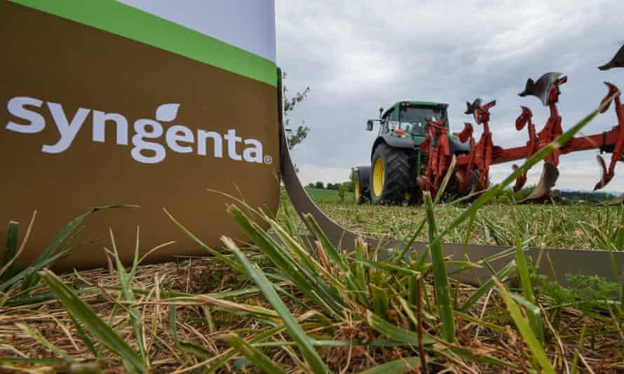 The Syngenta logo on a farm