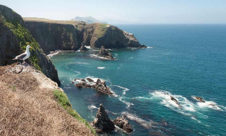 Anacapa, Channel Islands National Park, California, United States of America