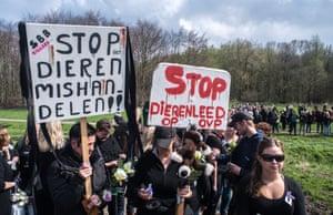 People protesting against policy towards animals in the Oostvaardersplassen.