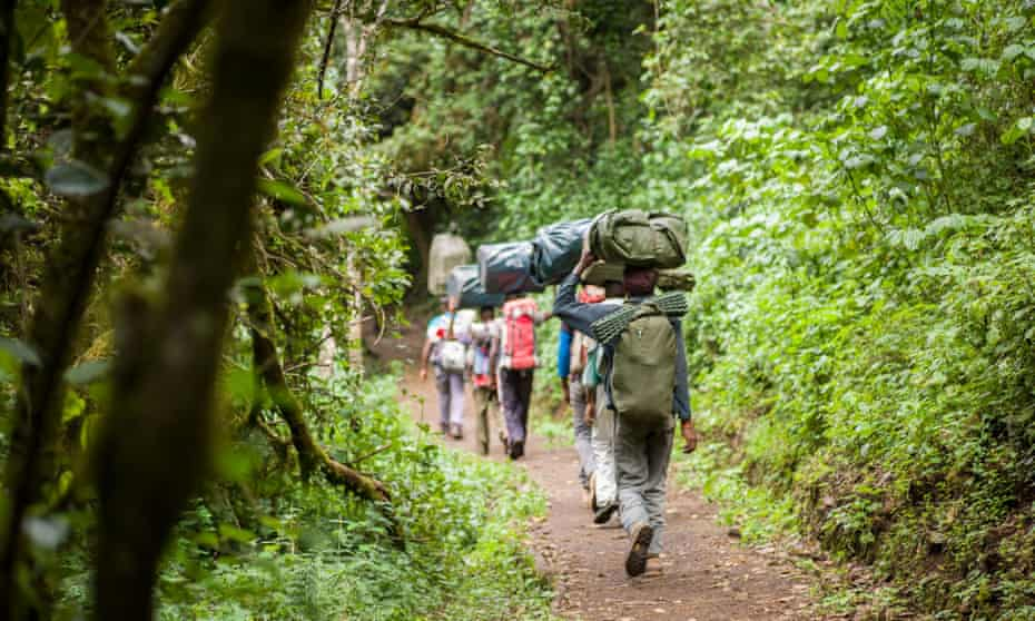 Porters walking in forest in the foothills of Kilimanjaro.