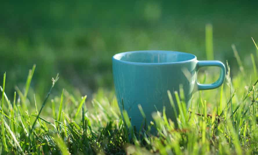 Cup with tea or coffee on green grass with sunlight