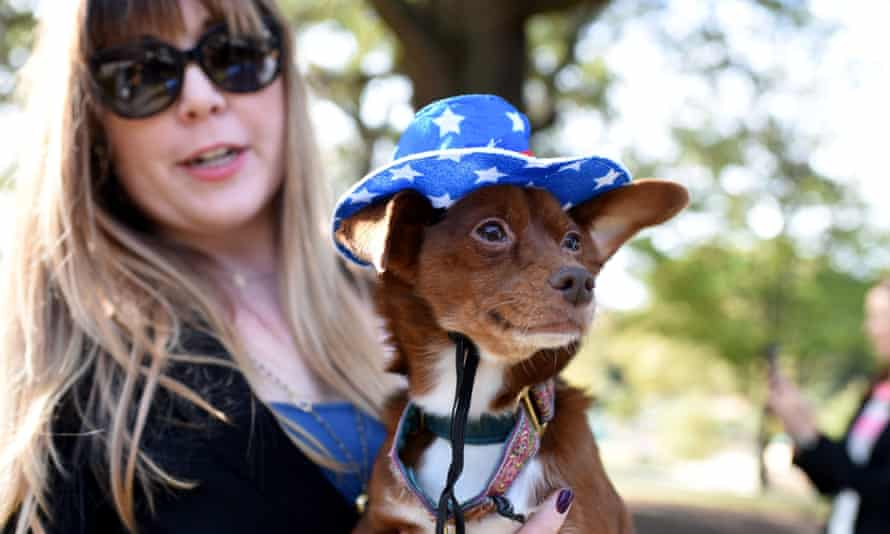 A volunteer brings a dog to a polling booth in Raleigh, North Carolina, on election day in 2016 to help de-stress voters
