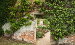 You don't have to have a fancy walled garden to fan-train fruit - it will do just as well against a shed or garage wall.
