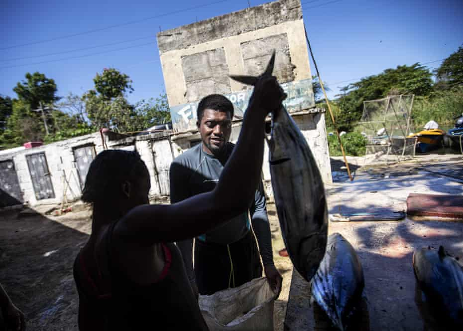 Spearfisherman Rick Walker, 35, sells his catch to a buyer at a fish market in White River