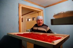 The president of the Cooperative of Saffron, Nikos Patsiouras, prepares to dry saffron stigmas in Krokos, Greece