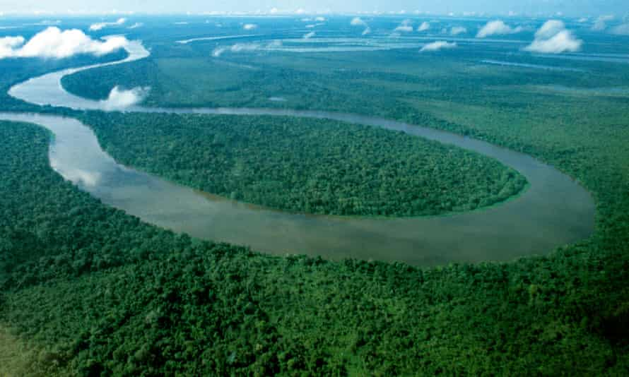 Reforestation is seen as essential if the world is to restrict warming to 1.5C, as outlined by the UN.