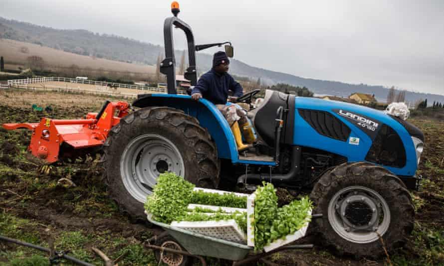 Two members of the Barikama, a farming cooperative run by African migrants in Italy, plough a field as part of a drive to feed families in lockdown.