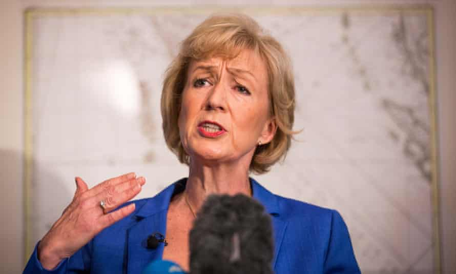 Andrea Leadsom, the new environment secretary. 'She has no instincts for [the environment] and no knowledge of it.'