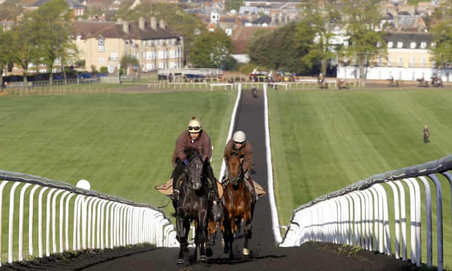 Just some of the thousands of racehorses trained in Britain.