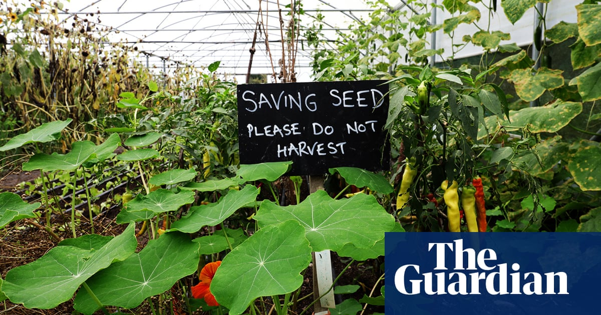 Prepare for Brexit with home-grown seeds af78b3e17836b