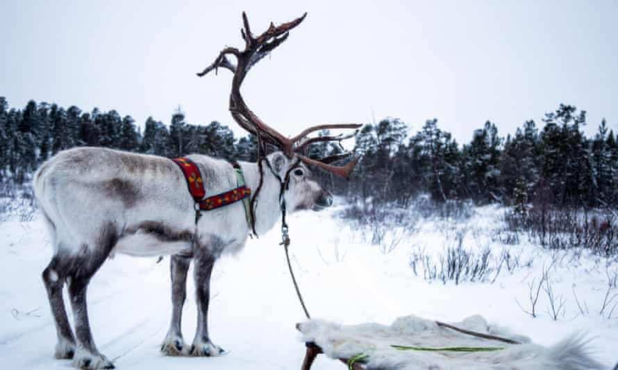All Aboard! The Sleigh Ride … not for the smartphone generation.