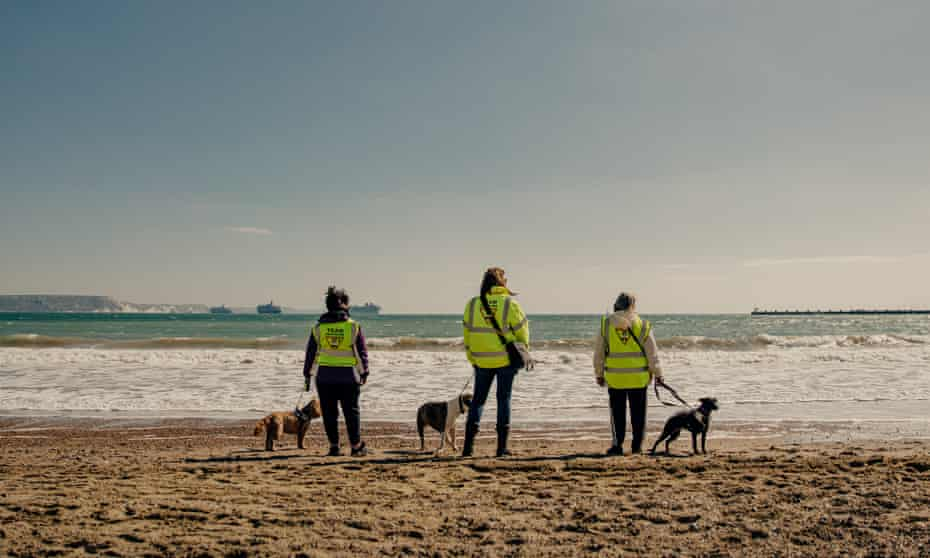 Amanda Hall with her dog Izzy, Anita Wingad with Honey (middle) and Sarah Wood with Annie on Weymouth beach.