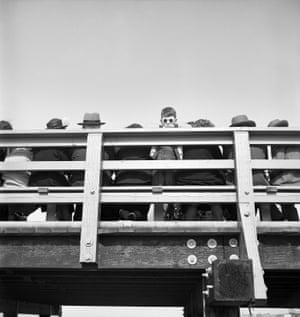 A boy wearing round sunglasses looks down over the Coney Island boardwalk railing from among a row of seated adults, New York, 1950