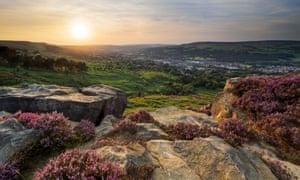 Ilkley Moor heather