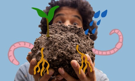 It's time we stopped treating soil like dirt – video