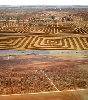 South Australia pattern