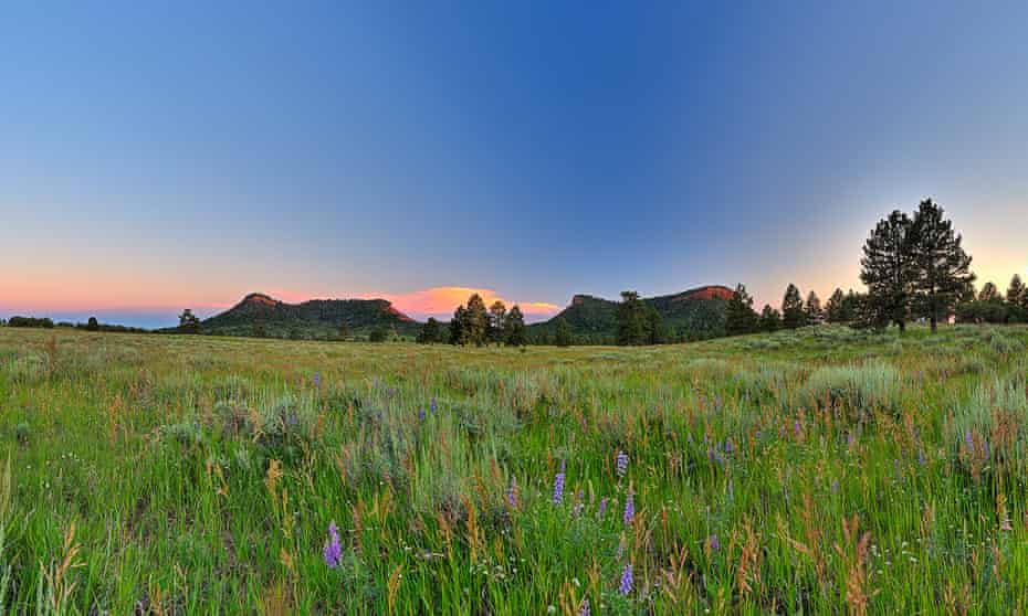 Bears Ears Buttes, 1.35m acres of land in southern Utah designated a national monument by Barack Obama.