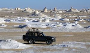 Safari vehicles carry tourists