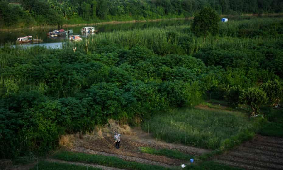 Farm near Red River