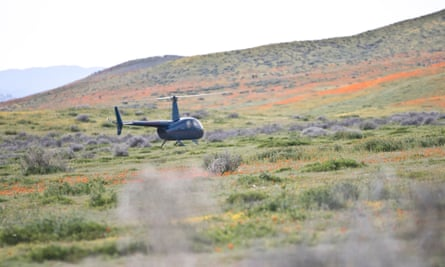 A helicopter illegally lands in the Antelope Valley California Poppy Reserve, crushing the delicate plants.