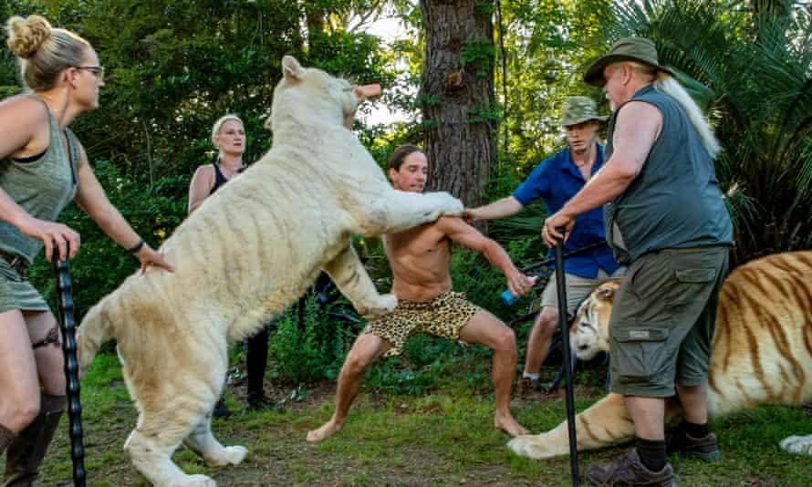 A scene from Tiger Safari in Myrtle Beach South Carolina.