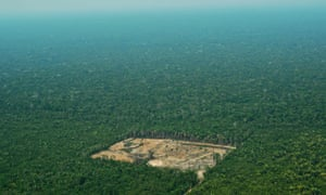 An aerial view of deforestation taken on 22 September 2017.
