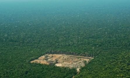 Deforestation in the Brazilian Amazon.