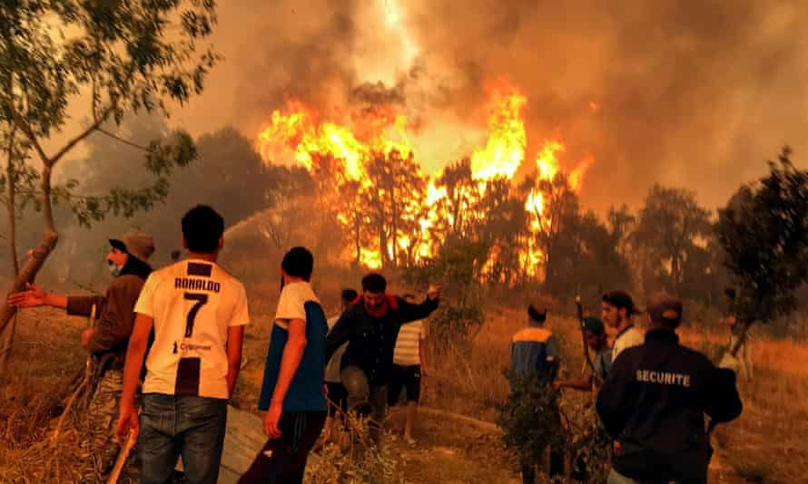 Villagers attempt to put out a wildfire in the Kabylie region of Tizi Ouzou, Algeria, on 11 August.