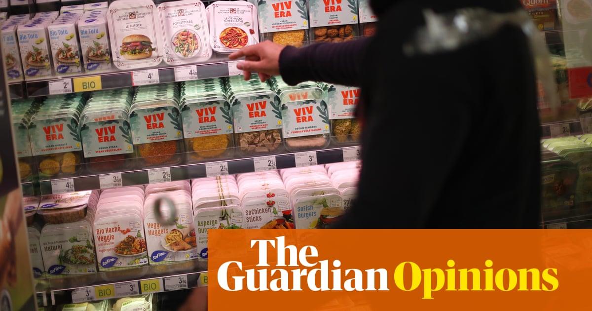 The EU has put plant-based burgers back on the menu | Alicia Kennedy