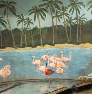 Flamingo and Palm Trees,