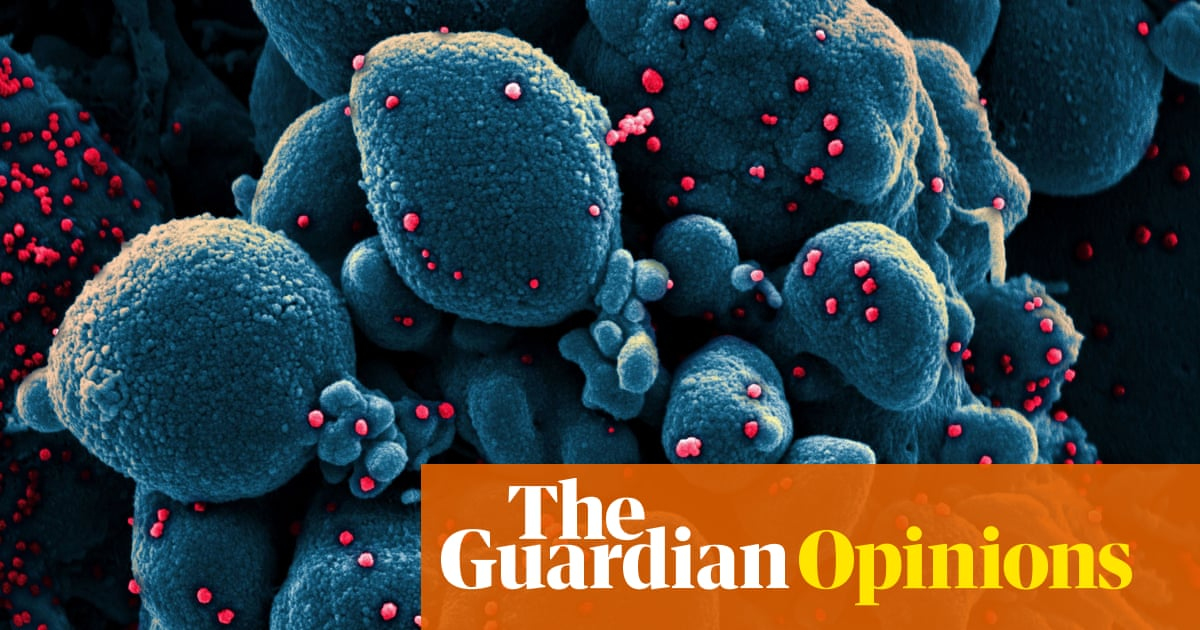 Coronavirus forces economics profession to leave comfort zone - The Guardian
