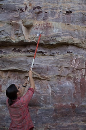 Over a three-month period the University of Western Australia research team recorded more than 250 sites.