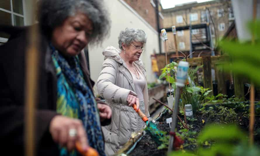 Earline Hilda Castillo-Binger and Mary Coyne tending the vegetables at Lambeth GP food co-op, south London