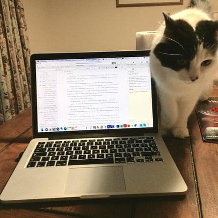 Owen's cat Lyra.