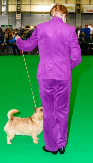 Woman in purple suit with dog at Crufts dog show 2019
