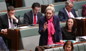 Alannah MacTiernan during question time in the house of representatives.