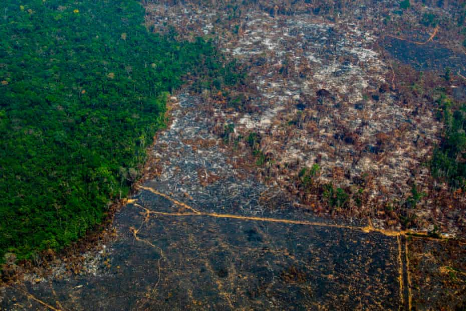 An aerial view of deforestation in Nascentes da Serra do Cachimbo Biological Reserve in Brazil's Amazon basin in August 2019.