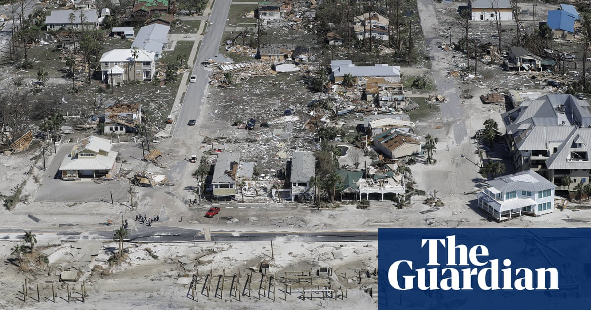 Florida's farmers plot new course after Hurricane Michael's deadly tear