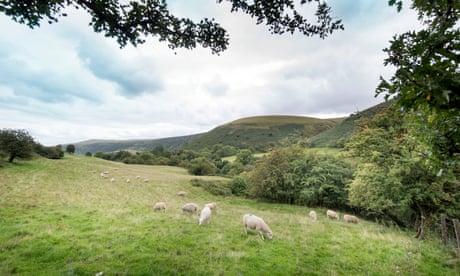 Writers' wilderness haven split over Brecon Beacons phone mast plan