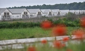 Living next door to 17 million chickens: 'We want a normal
