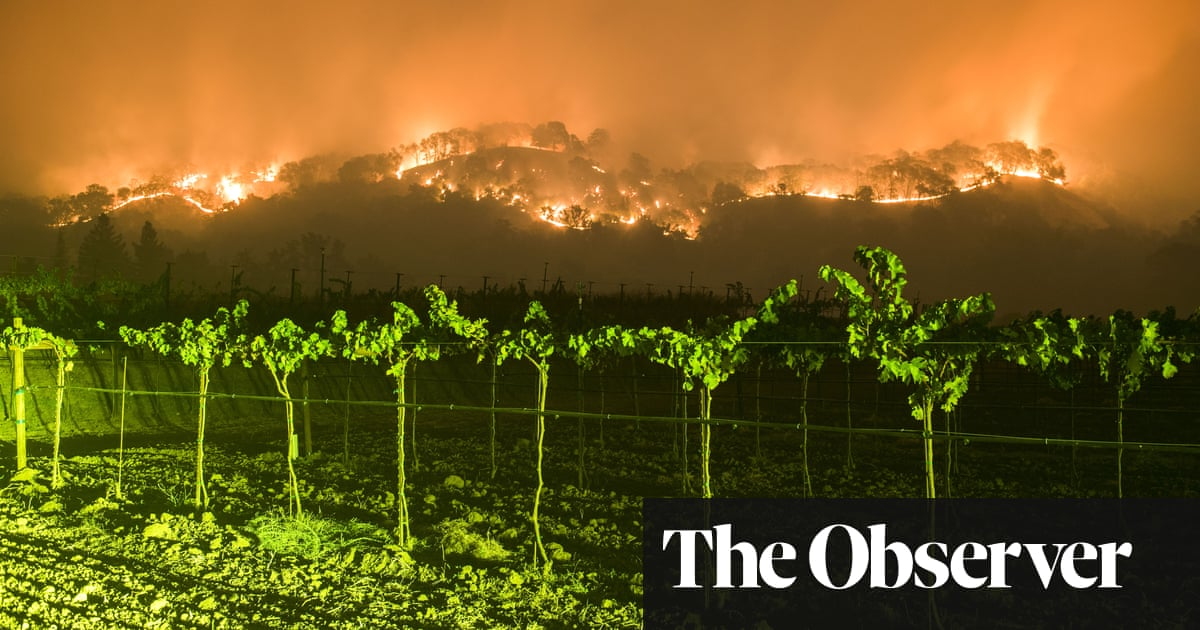 What climate change means for the wine industry